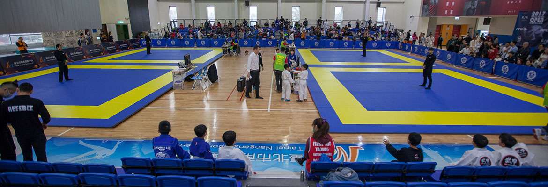 2017 全國柔術公開賽